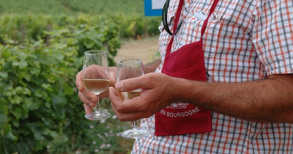 Beaune Wine Holiday - Credits Cote-d'Or Tourisme R Krebel