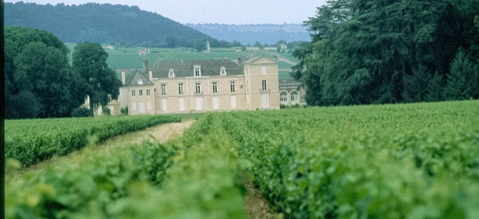 Beaune Wine Holiday- Chateau de Meursault - Côte-d'Or Tourisme-Rozenn Guiton