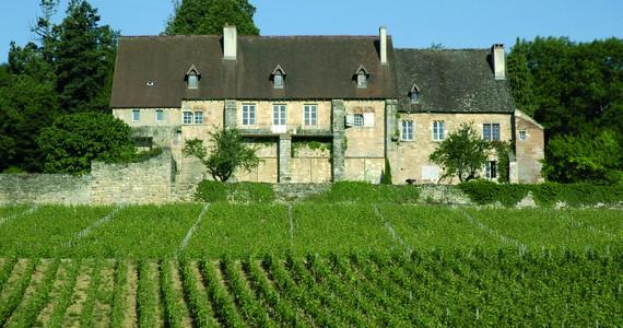 Dijon wine tour - Credits Office de Tourisme de Dijon - Atelier Démoulin