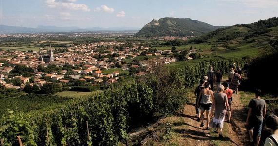 Rhone Wine Tours - visite vignobles cornas