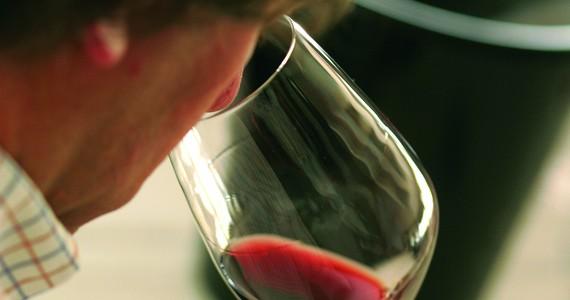 Douro wine tour - Credits Douro Wine Tourism