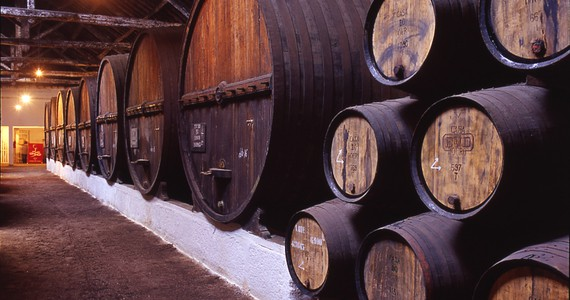 Port wine tasting - Credits Douro Wine Tourism