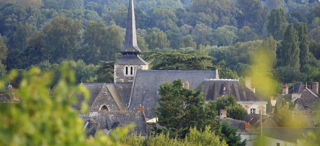 Loire area
