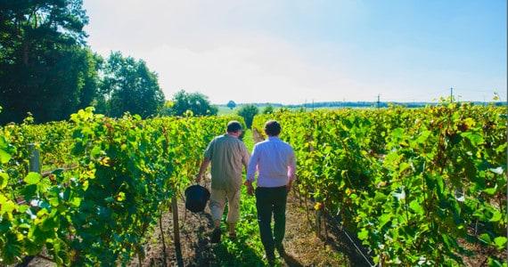 Loire wine tour - Credits Chateau du Petit Thouars