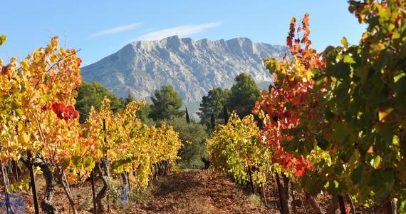 Provence Wine Tour - Credits Christophe Duranti
