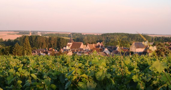 Sancerre Wine Tour- Credits ADTI