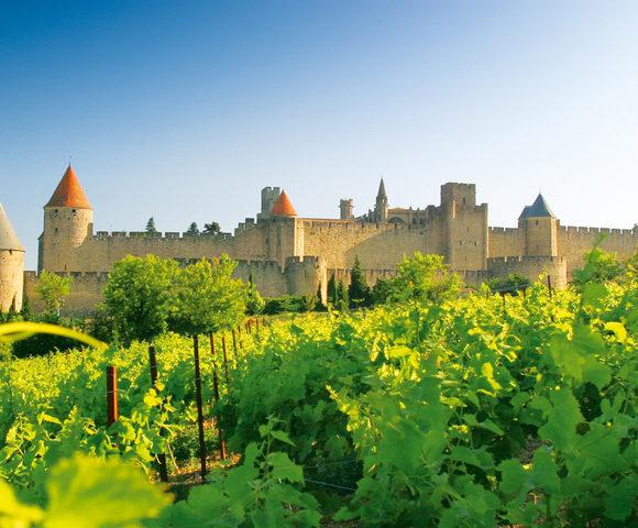 Languedoc holidays -Credits Carcassone et vignes