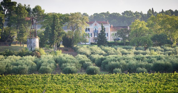 Languedoc holidays- Credits Chateau Canet
