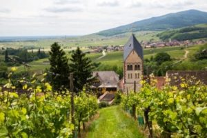 Car Club Wine Trip- Credits Meyer and ADT Alsace