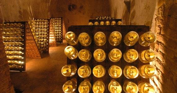 Dom Perignon tour