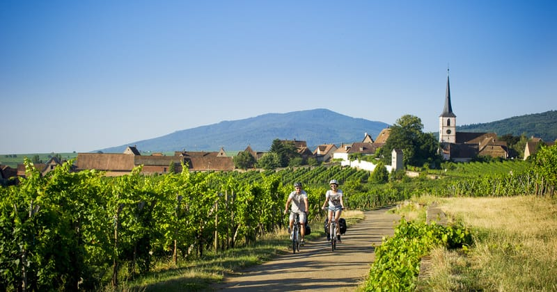 Strasbourg Wine Tour - Credits Infra and ADT Alsace