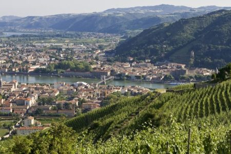 Ultimate French wine tour - Credits LPASCALE