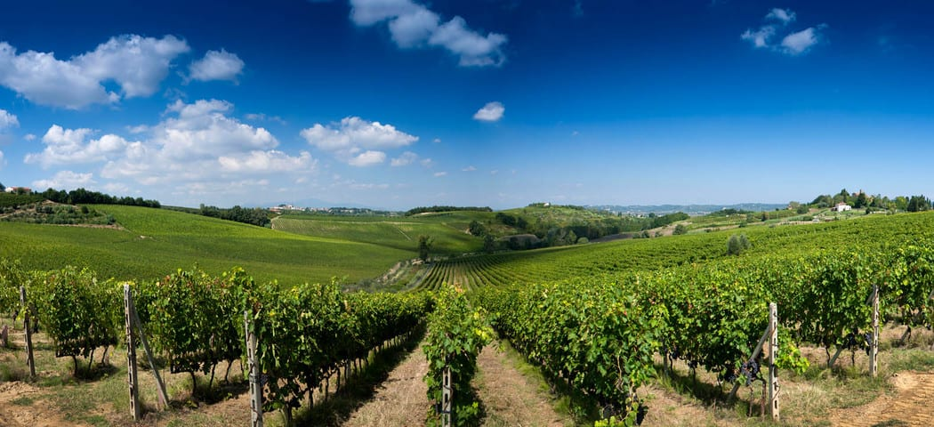 Piedmont area credits La Spinetta