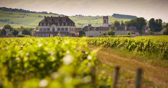 Wine Tour Booking - Credits Beaune Tourisme Chateau de Pommard