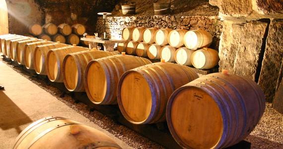Wine vacations credits Le Chai Mégalithe - Caves de la Perrière