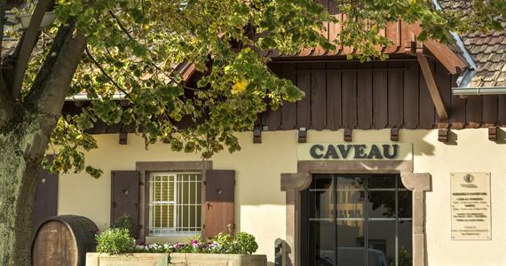 Colmar Wine Tasting credits Domaine Viticole de la Ville de Colmar