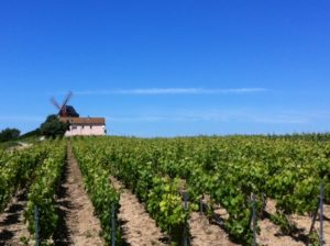 champagne-tour-in-france-3