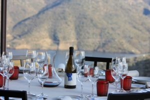 Corporate Trips- Credits Douro Wine Tourism