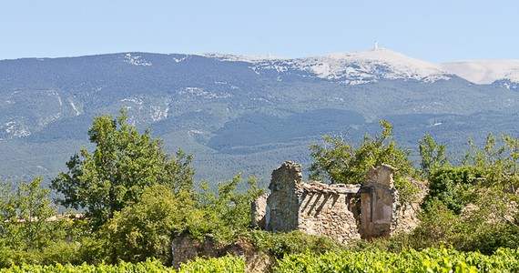 Provence Wine Break- Credits- Chateau Pesquie