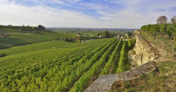 Wine and Spa - Credits Heurisko