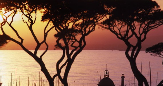 Provence wine break- Credits St Tropez Tourism