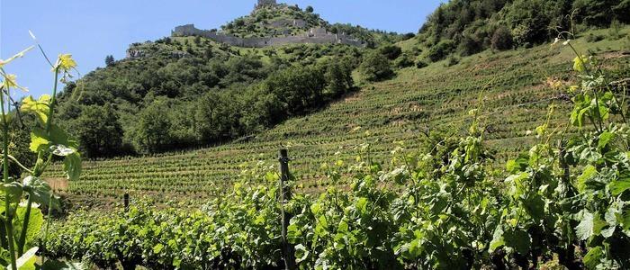 Rhône Valley tour Crussol