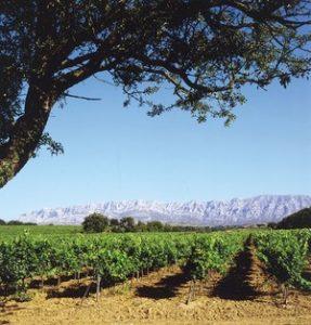 Copyright Mas de Cadenet - Provence Spa Break