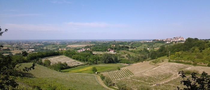 Piedmont Ma
