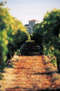 Cognact Tours- Credits Charente Tourisme