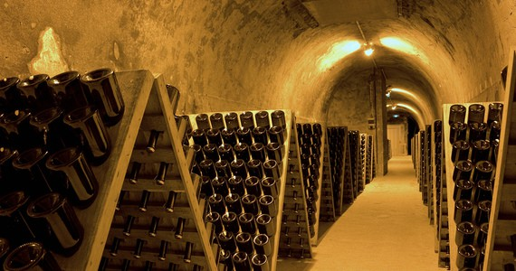 Champagne tasting in Epernay- OTAR - Carmen Moya