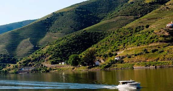 Credits Feeldouro Douro3_preview