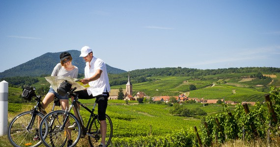 Alsace wine tours - Credits Infra and ADT Alsace