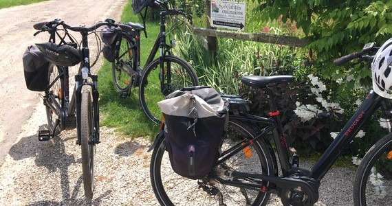 Burgundy Wine Tours - Bike