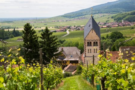 wine tour in alsace Credits Meyer and ADT Alsace