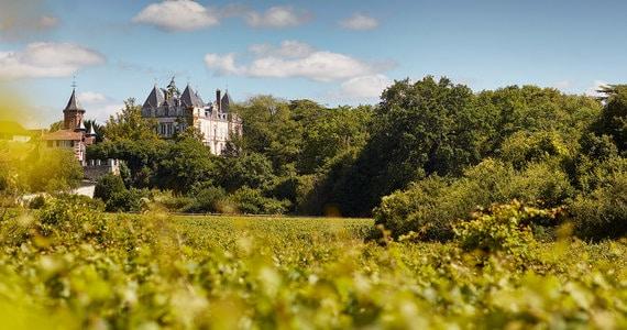 Burgundy Wines- credits Dom Devillard