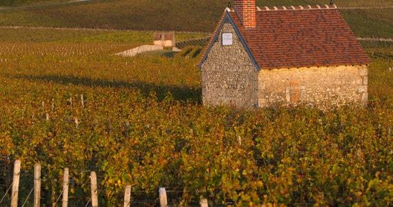 Loire Valley Trip credits CentreValdeLoire