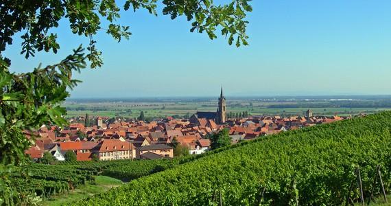 Wine tour in Alsace © C. Fleith