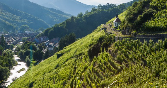 Wine escape- Credits Meyer and ADT Alsace