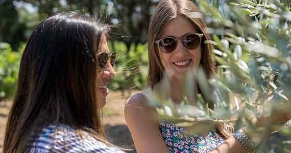 Provence wine tour- Credits Provence Reservation A la Francais Provence