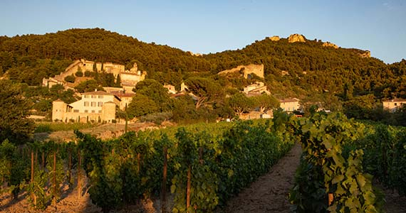 Chateauneuf-du-Pape tour- Credits A Hocquel and VPA