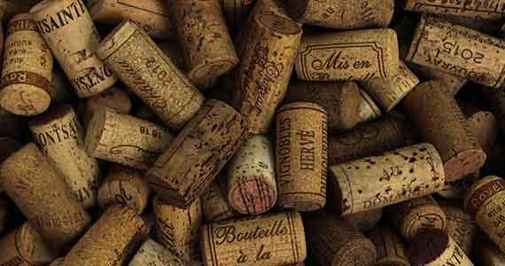 carcassonne wine tour
