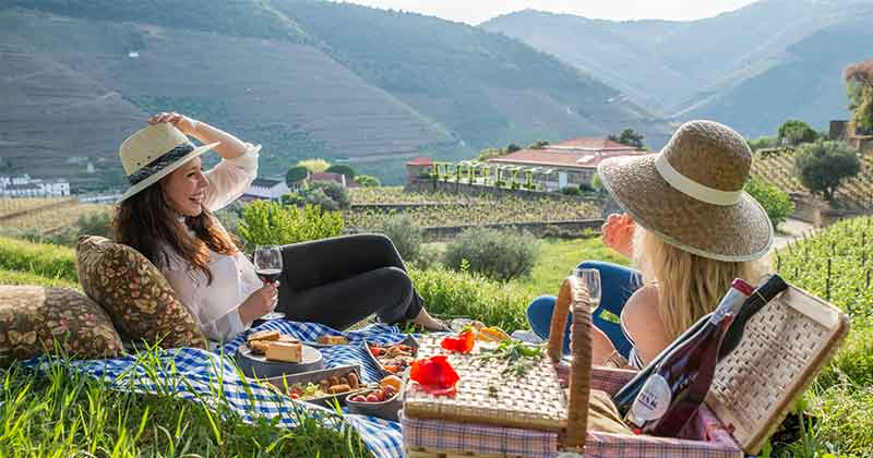 Wine tasting in the Douro vineyards