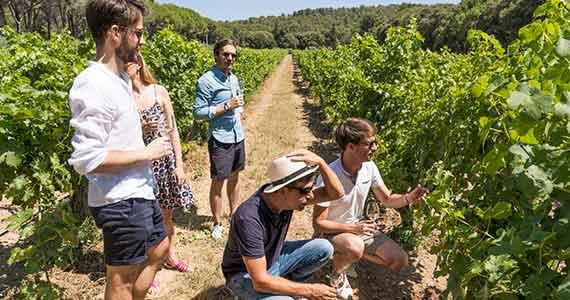 Provence Wine tour- Copyright-Provence Reservation-A la Francais Provence