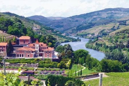 Douro Wine Tour