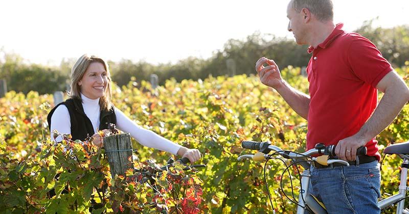 Top 5 wine experiences- Credits Stevens Fremont